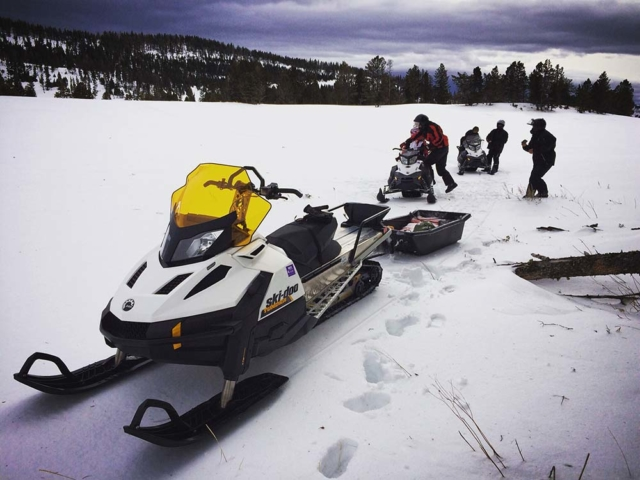 trail riders snowmobiling in montana